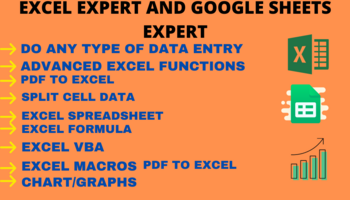 excel data entry expert