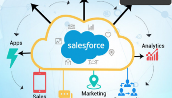 Salesforce Domain Expertise