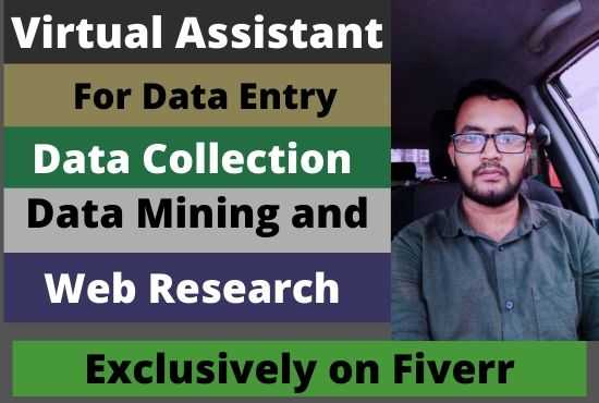 Md. Jahidul Islam Z. - I am a virtual assistant for any kind of Data Entry